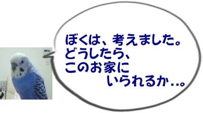 20040102_1916_001