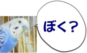 20031221_1940_001