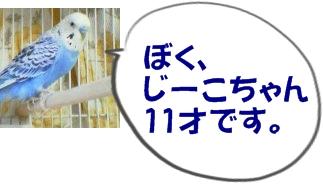20031221_1940_000