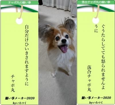 Photo_20200717150201